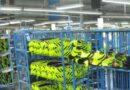 Chivilcoy: Volverá a abrir una fábrica de calzado que cerro en 2018