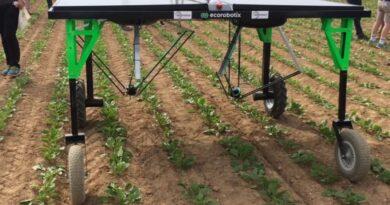 En la Argentina ya trabajan más de 1.000 robots agrícolas