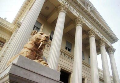Vuelve a abrir el Museo de la UNLP